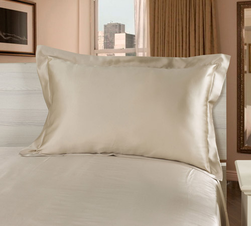 bright_coffee_22_silk_oxford_pillowcase
